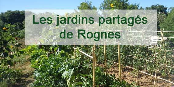 Les jardins partagés de Rognes :
